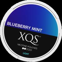 XQS Blueberry Mint Slim